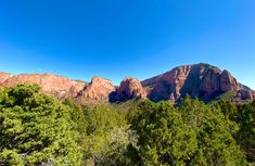 Zion National Park, National Parks, Mountains, Day, Travel, Beautiful, Viajes, Trips, Traveling