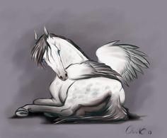 One I like Pegasus
