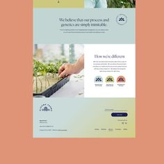 Ecommerce Website Design, Website Design Layout, Layout Design, Website Designs, Website Ideas, Graphic Design Templates, Graphic Design Print, Web Design, Website Design Inspiration