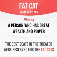 """""""Fat cat"""" is a person who has great wealth and power. Example: The best seats in the theater were reserved for the fat cats. Slang English, English Idioms, English Phrases, English Writing, English Words, English Lessons, English Grammar, Slang Phrases, Idioms And Phrases"""