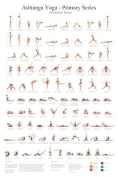 Ashtanga Yoga Primary Series with Sammy Seriani. This poster illustrates the postures of the primary series Full color poster shows perfect yoga Ashtanga Yoga Primary Series Poster Yoga Fitness, Fitness Workouts, Physical Fitness, Fitness 24, Fitness Sport, Fitness Motivation, Fitness Logo, Health Fitness, Fitness Quotes