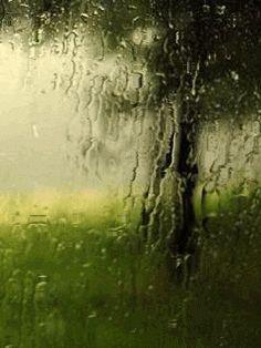 Chove Chuva…Chove sem Parar… – Humor de Mulher!