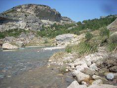 Spanish Pyreneeen