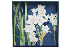 "Paperwhites Square Tray, 15"" on OneKingsLane.com by rockflowerpaper #49"