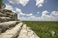 Temples de Coba et sa jungle environnante