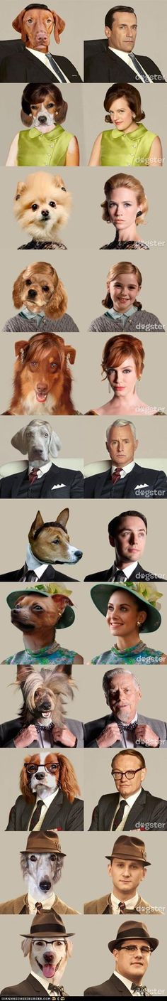 the cast of Mad Men as dogs #madmen