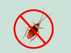 How to Get Rid of Roaches -- via wikiHow.com