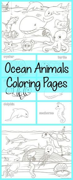 Ocean Animals Coloring Pages ~ all free! Color a dolphin, whale, octopus… Ocean Coloring Pages, Animal Coloring Pages, Colouring Pages, Coloring Pages For Kids, Coloring Sheets, Educational Activities, Preschool Activities, Vocabulary Activities, Ocean Projects