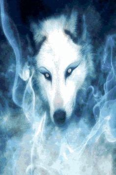 Free Wolf Wallpaper Backgrounds
