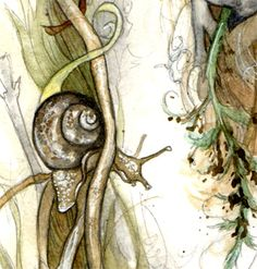 Amy Holliday Illustration: New Bird Nests Illustrations // A Sneak-Peak at some details...