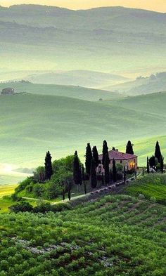 Belvedere Val D'Orcia/Tuscany