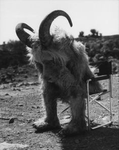 Behind the scenes of the film 'Where the wild things are'