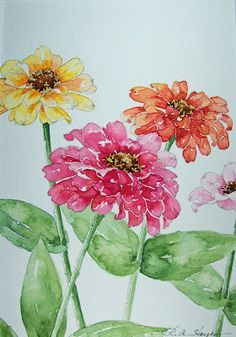 Zinnias In Watercolor ` Watercolor Zinnias zinnias in watercolor / watercolor zinnias ` watercolor zinnias tutorial ` zinnias in watercolor ` watercolor flowers zinnias Watercolor Pictures, Watercolor Cards, Watercolor Flowers, Watercolor Paintings, Watercolours, Watercolor Portraits, Watercolor Landscape, Abstract Paintings, Indian Paintings