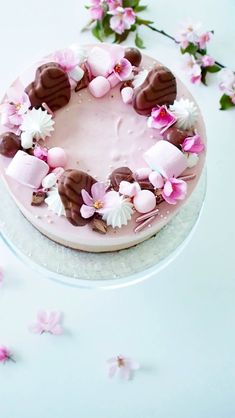 Geisha Chocolate Raspberry Cheesecake – The Most Delicious Cake of the Summer – Ko … – Pastry World Pretty Cakes, Beautiful Cakes, Amazing Cakes, Dessert Original, Chocolate Raspberry Cheesecake, Köstliche Desserts, Savoury Cake, Let Them Eat Cake, No Bake Cake