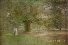 Eloping to New Orleans. #WeddingPortraitSession at #AudubonPark in #NewOrleans.