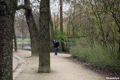 Vondelpark - Amsterdam NL