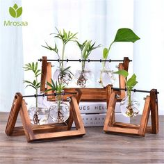 Retro Glass Planter Blub Vase with Retro Solid Wooden Stand Home Decoration Terrarium Stand, Glass Terrarium Containers, Glass Planter, Mini Terrarium, Bedroom Plants, Bedroom Decor, Beach House Decor, Diy Home Decor, Art Decor