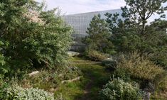 Toni Areal - Pixel Park Studio Vulkan Landschaftsarchitektur