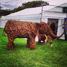 Amazing wicker elephant at The Southport Flower Show Southport Flower Show, Wicker, Lion Sculpture, Elephant, Statue, Amazing, Flowers, Art, Art Background