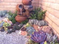 Add some succulents and cactus to the back corner and change the edging.