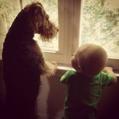 Me and my little pal just checking out the neighbourhood !