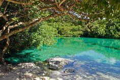 Casa Cenote - Tulum - Omdömen om Casa Cenote - TripAdvisor