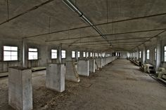 Shredded Wheat Factory, WGC march '14 - Derelict Places