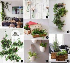 *ann.meer: Inspirations Pinboard #2: Zimmerpflanzen