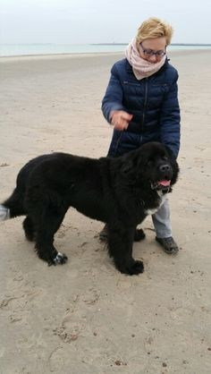 Nies met Snoop Dog op strand bij Renesse