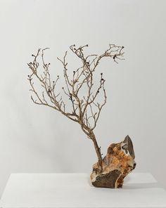 Anya Gallaccio - Works | Thomas Dane Gallery