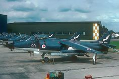 Line-up of Sea Harrier jet aircraft, pre-Falklands War paint scheme Navy Aircraft, Ww2 Aircraft, Aircraft Carrier, Paper Aircraft, Military Jets, Military Aircraft, British Aerospace, Falklands War, British Armed Forces