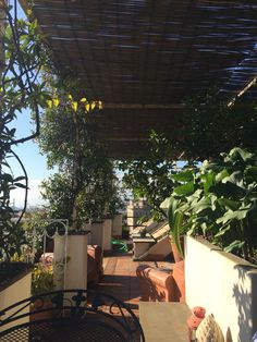 Outdoor living, Piazza Corvetto, Genova