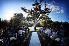 Beautiful Wedding Aisle.