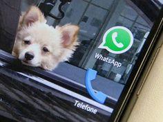 De novo? WhatsApp: Justiça do RJ manda bloquear aplicativo: ift.tt/29SqorS