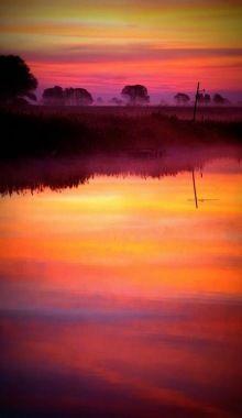 Sunrise On The Bog Bombay