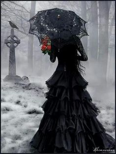 Lace victorian gothic dresses red heart