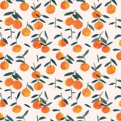 Clementine peach - Elizabeth Graeber