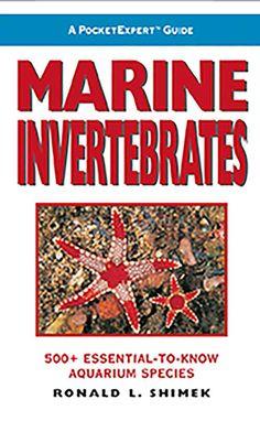 A PocketExpert Guide: Marine Invertebrates : 500+ Essential-to-Know Aquarium species