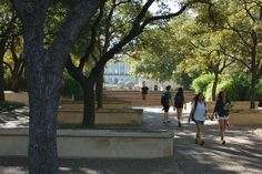 """Mock Immigration Sting At UT Austin Canceled  They didn't cancel the """"game"""" because it was wrong, but because they """"feared retaliation by the university."""""""