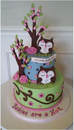 "Owl Baby Shower Cake. Oh my god I need this cake for my baby ""sprinkle"" matches my owl theme for baby girls room. <3"