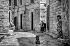 Life in the Alleys - Trani - Puglia A moment of life in the old alleys of Trani - Puglia - Italy