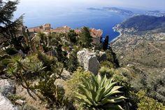 JARDIN EXOTIQUE D'EZE Parcs et jardins Nice Côte d'Azur
