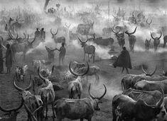 Dinkas, South Sudan, 2006