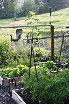 Always nice to have a place to sit and enjoy your lovely kitchen garden. Potager Bio, Potager Garden, Veg Garden, Vegetable Garden Design, Edible Garden, Garden Beds, Vegetable Gardening, Brick Garden, Garden Trellis