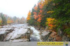 Lower Falls    #NewHampshire #NovaInglaterra #NewEngland #WhiteMountains #EUA #USA #EstadosUnidos #Viagem #Kancamagus #MauOscar #Outono #Fall #Foliage #LowerFalls