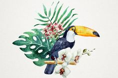 Tropical watercolor set+PNG! by Lembrik's Artworks on @creativemarket