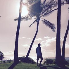 hawaii 🇺🇸 Maui island