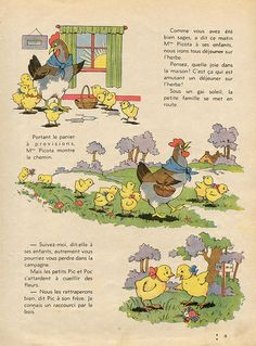 les emotions de le famille cocorico, 1941 Mison, Childhood, Photo And Video, Illustration, Rooster, Books, Design Ideas, Chicken, Nature
