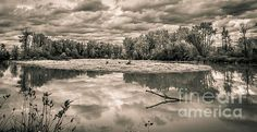 Black and white views of a serene reflecting river, beautiful scenic landscape photo