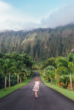 The BEST 6-Day Oahu Photo Itinerary - Botanical Gardens